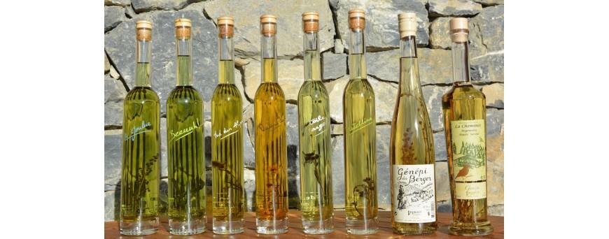 Distillerie, génépi et chartreuse